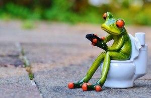 frog on toilet